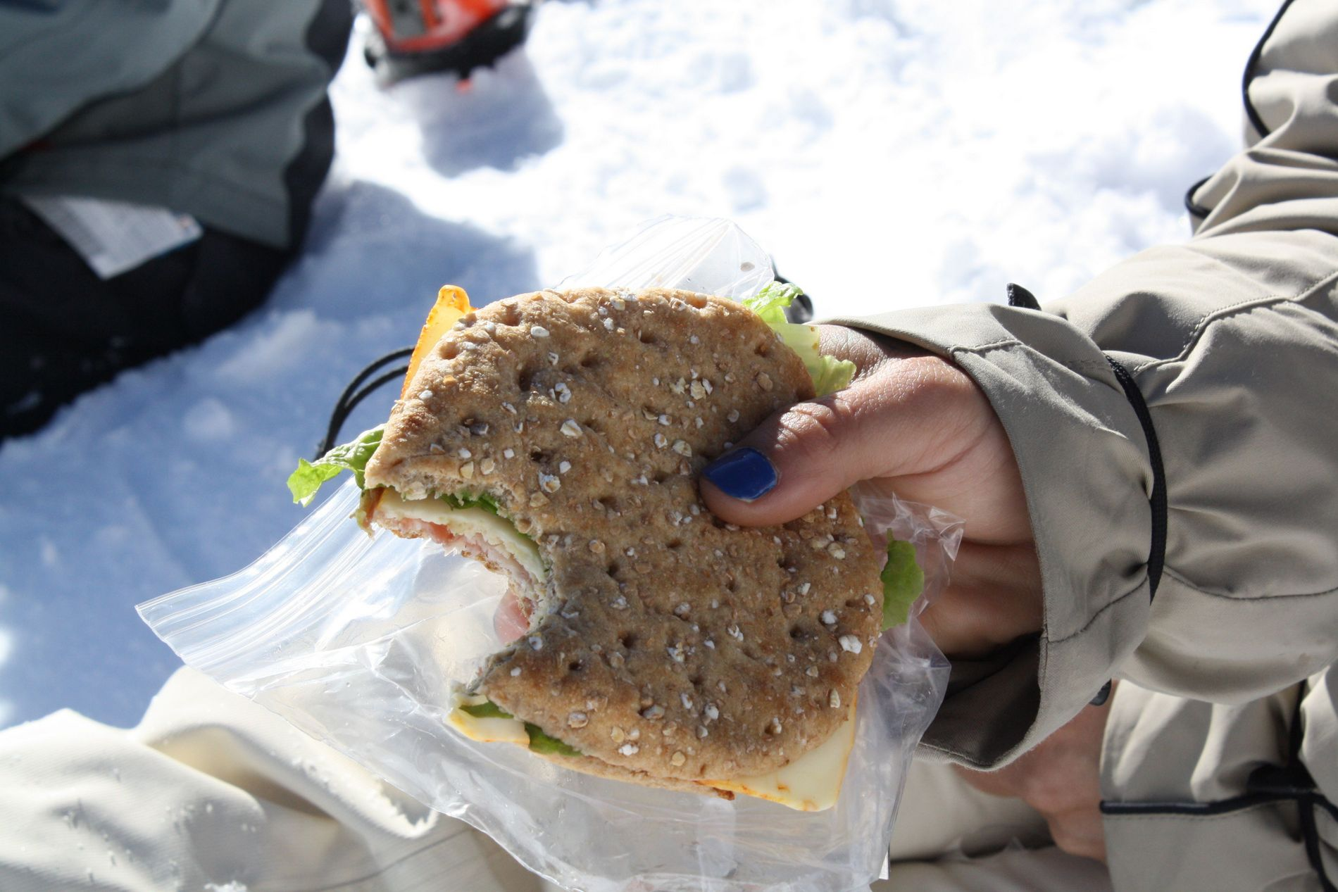 The Snow Junkies lunch