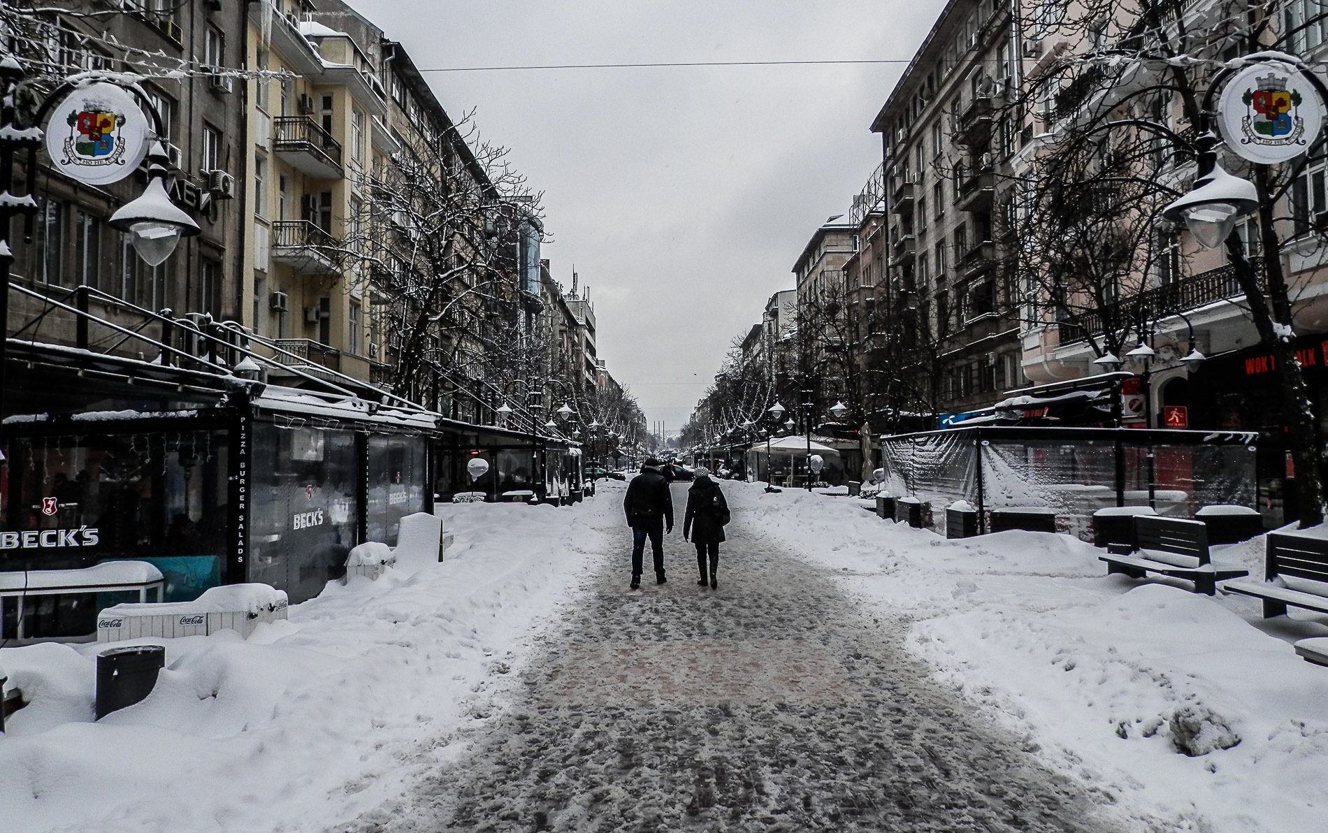 Sofia in the snow